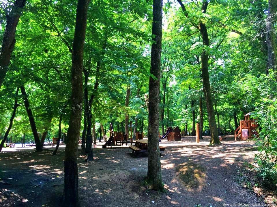 Belgrad Ormanı Nasıl Gidilir?